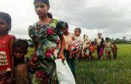 নতুন আসা রোহিঙ্গারা উখিয়ার বালুখালিতে  আশ্রয় পাবে --জেলা প্রশাসন
