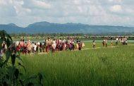 একদিনে আরো অর্ধলক্ষাধিক রোহিঙ্গার প্রবেশ