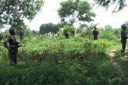 মিয়ানমার সেনা সমাবেশ বৃদ্ধি করায় নাইক্ষ্যংছড়ি সীমান্তে বিজিবি'র কঠোর নজরদারী